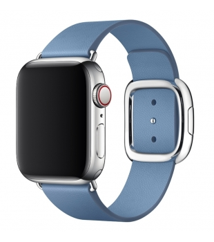 Apple 40mm Cornflower Modern Buckle Medium